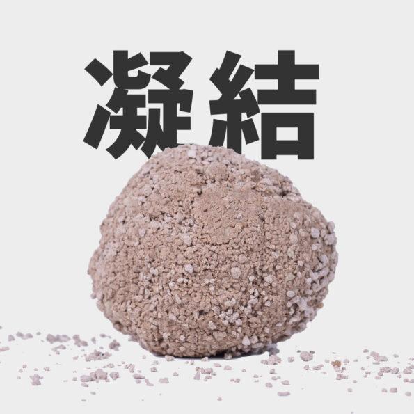 礦砂 凝結 里德貓砂
