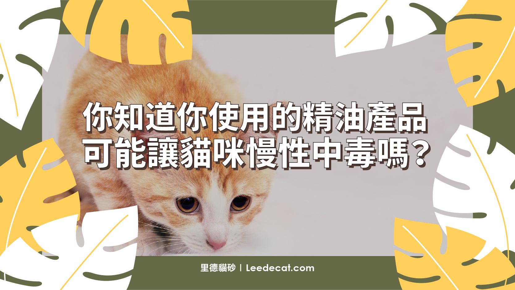貓 精油 慢性中毒