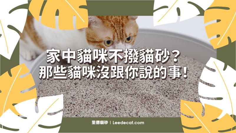 埋砂 貓咪 貓砂盆