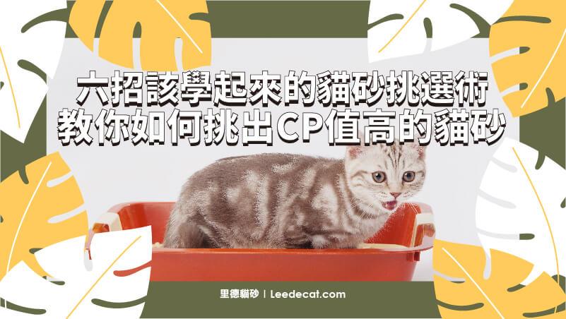 教你如何挑出CP值推薦評價高貓砂